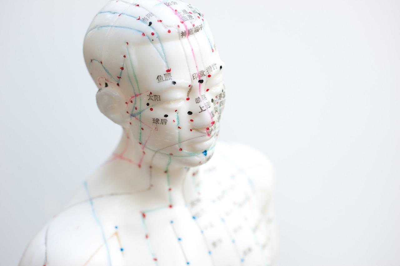 Akupunktur gegen Haarausfall: Vorteile und Ergebnisse