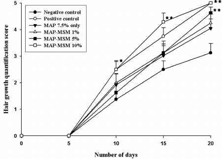 haarwachstum ergebnisse studie msm