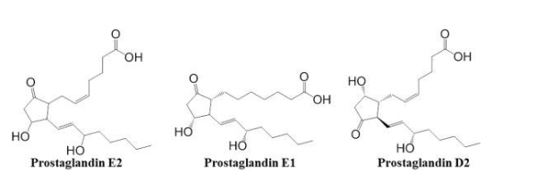 Chemische Struktur der Prostaglandine