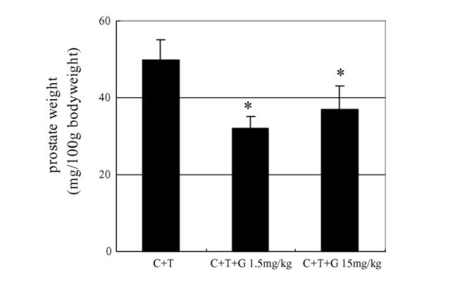 Reishi wirkt auf die Verringerung der Testosteronwirkungen auf das Prostatawachstum.
